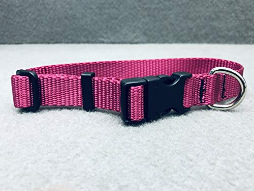 Fabri-Tech, Inc. Classic Adjustable Dog Collar, Small, Neck 10-16