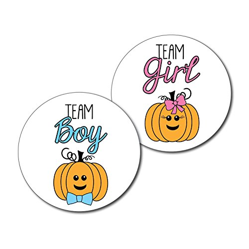 2.5'' Set of 36 Pumpkin Team Girl & Team Boy Gender Reveal Party Stickers - Halloween Thanksgiving Autumn Fall Baby Shower - pink & blue by Best Wishes Boutique