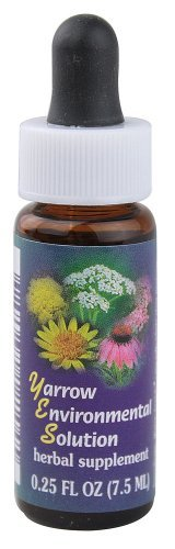 0.25 Ounce Flower Essence - 7