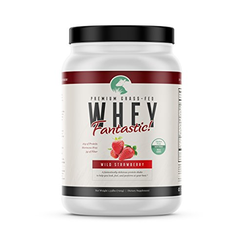 Grass Fed Strawberry Whey Fantastic All Natural Whey Protein Blend from Isolate Concentrate Perfect for Building Lean Muscle Non-denatured, Non-GMO, Gluten Soy Free 1.6lb – 20 Servings