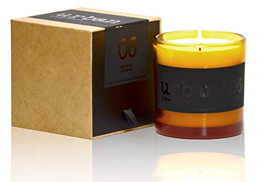 DecoCandleS Urban Concepts Lush - Mango Guava Infusion - Highly Scented Candle - Long Lasting - Hand Poured in The USA - Hotel Inspired Collection - 9 - Collection Guava