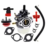MOTOALL Carburetor Tune up kit for Briggs & Stratton 801396 801233 801255 084132 084133 084232 084233 084332 084333 Toro CCR2450 CCR3650 210 221 Powerclear Lawnboy 2 Cycle Snowblower GTS Snowthrower