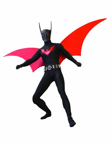 Deluxe Collectors Batman Costumes (Batman Beyond: 1:6 Scale Deluxe Collector Figure)