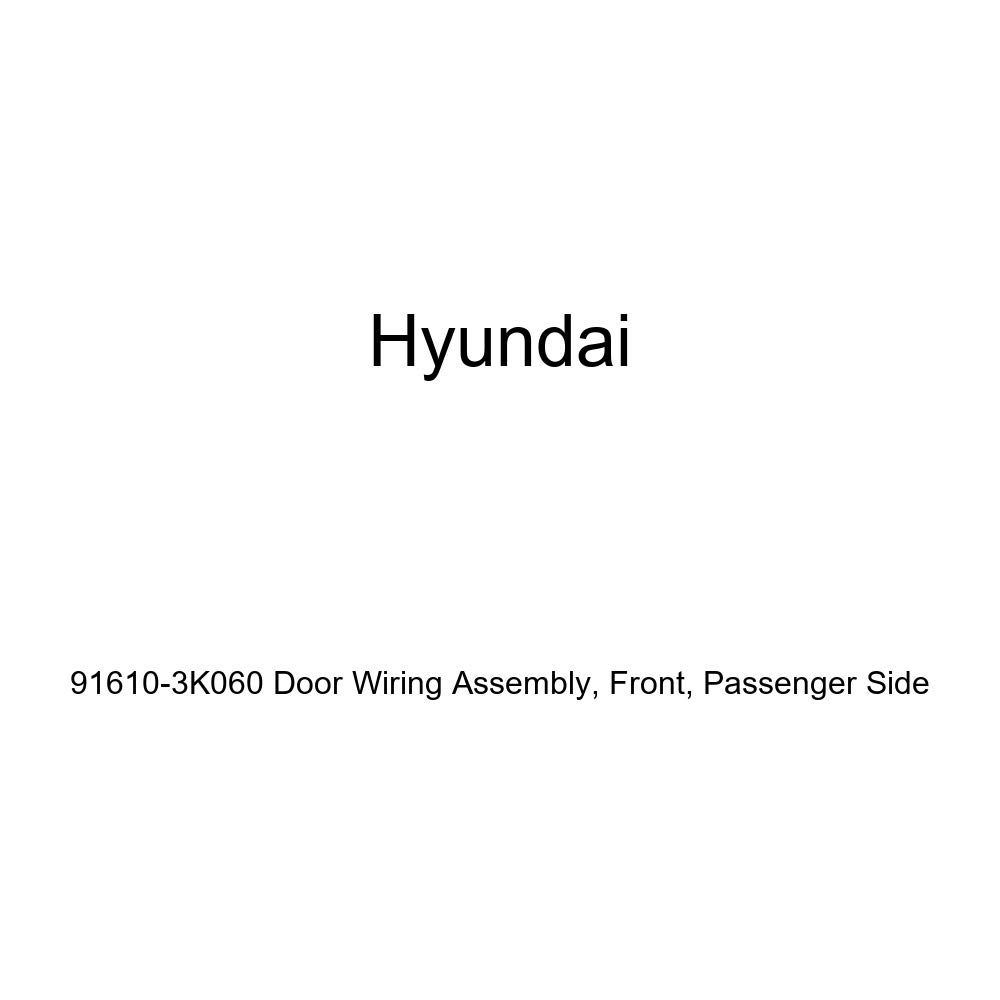 Passenger Side Front Genuine Hyundai 91610-3K060 Door Wiring Assembly