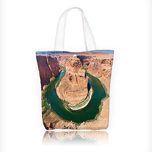 Canvas Tote Handbag Iguana animal wildlife. Shoulder Bag Purses For Men And Women Shopping Tote W16.5xH14xD7 INCH