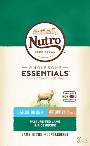 Nutro Wholesome Essentials Puppy Large Breed Dry Dog Food Pasture-Fed Lamb & Rice Recipe, 30 Lb. Bag