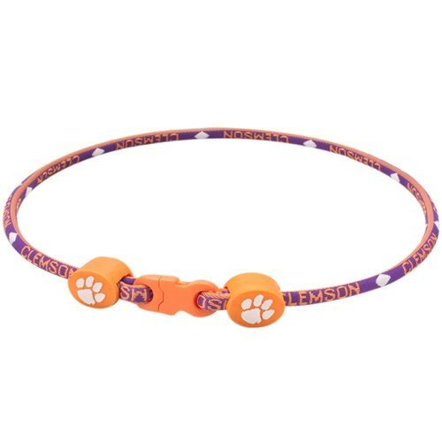 Clemson Tigers 20'' Titanium Sports Necklace by Eagles Wings