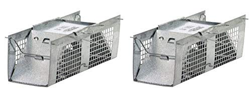 Havahart 1020 Live Animal Two-Door Mouse Cage Trap (Pack of 2)