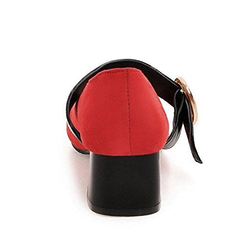 Pumps Mini Red Belt Women Size Low Heel Classic Zanpa tSOaqnwRR
