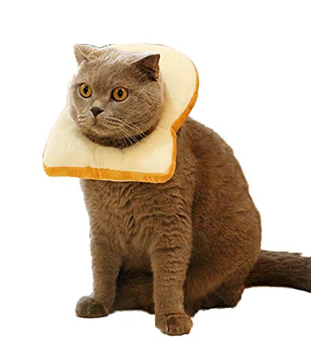 komii Pet Costume,Creative Toast cat Headdress, Soft Bread Slice Collar for Cats, Toast Bread hat, Bread-Shaped pet hat, Easy to Remove, Cute pet Makeup, cat Cosplay Cap, cat Toy (M)