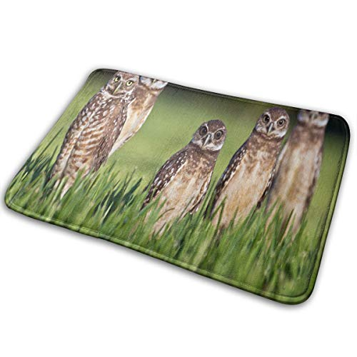 FunnyCustom Doormat Nine Amazing Facts About Owls Personalized Non Slip Water Absorption Bath Mat for -