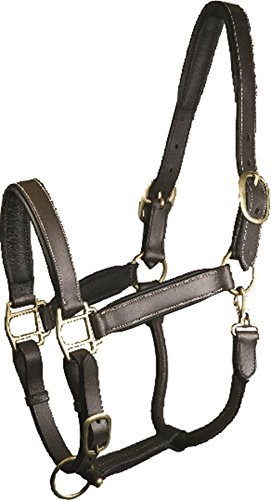 GATSBY LEATHER COMPANY 284211 Adjustable Padded Leather Halter Brown, Large (Gatsby Leather Halter)