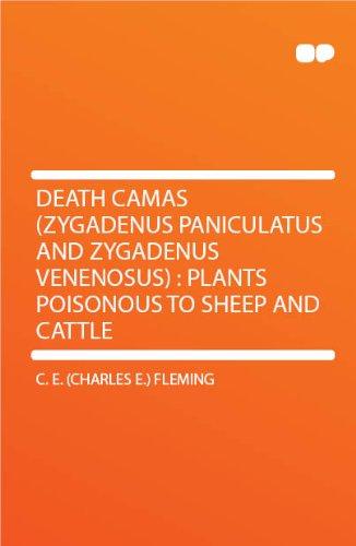 Death Camas (Zygadenus Paniculatus And Zygadenus Venenosus) : Plants Poisonous To Sheep And Cattle [FACSIMILE]