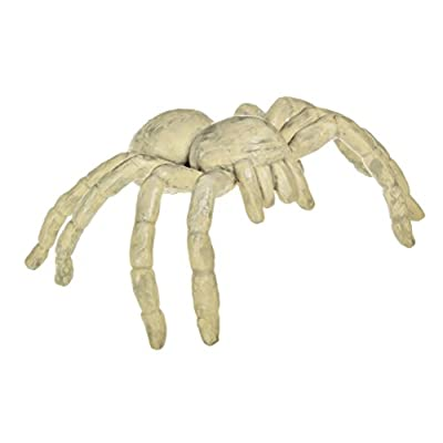 Safari Ltd. Plastic Miniatures in Toobs-Cave Dwellers: Toys & Games