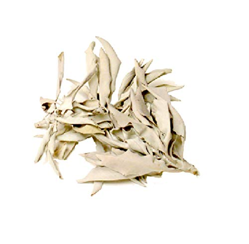 (The California White Sage Leaves & Clusters -1LB)