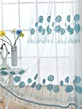 Aside Bside Modern Style Sheer Voile Window Curtains Panels Rod Pocket Fresh Dandelion Embroidered Design Home Decorations for Living Room(1 Panel, W 50 x L 72 inch, Blue)