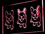 ADVPRO French Bulldog Puppies Puppy Dog LED Neon Sign Red 24'' x 16'' st4s64-j264-r