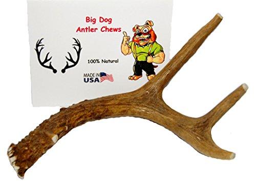 Big Dog Antler Chews Puppies product image
