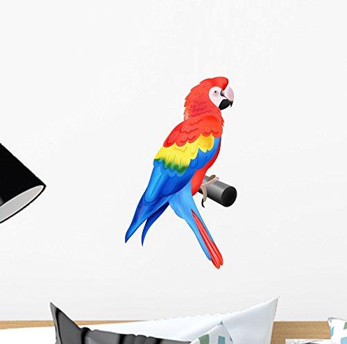 Jungle Bird Perch - 3