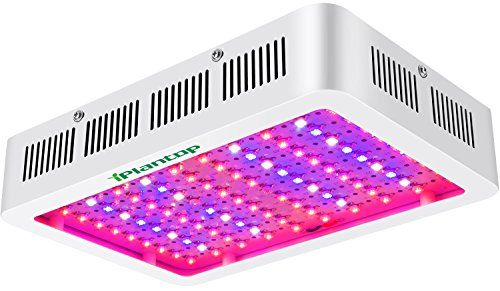 Bloom Led Grow Light in US - 7