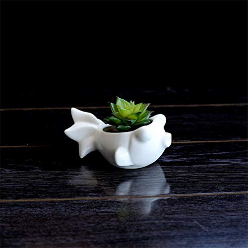 Best Quality - Flower Pots & Planters - Mini Cute White Ceramic Succulents Flower Pots Fish Shape Flower Green Plant Pot Home Office Wedding Desktop Landscape Flowerpot - by SeedWorld - 1 PCs for $<!--$16.99-->