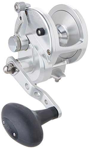 Avet JX6.0 Lever Drag Conventional Reel (Silver)
