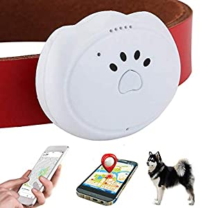 Jason Zeng GPS Pet Tracker & Activity Monitor Intelligent 5-Level Positioning System, No Subscription Fee IP67 Depth Waterproof Pets & Rare Animal Searcher Locator Trajectory Tracking Alarm 1