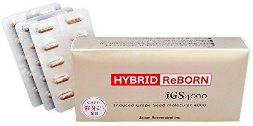 ハイブリッドリボーン HYBRID ReBORN 30カプセル(約1ヶ月分) B01MXMCCTW