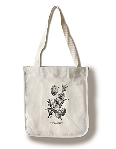 Lantern Press Amandes  Open Fruit  Vintage Bookplate  Adolphe Millot Artwork 100% Cotton Tote Bag  Reusable