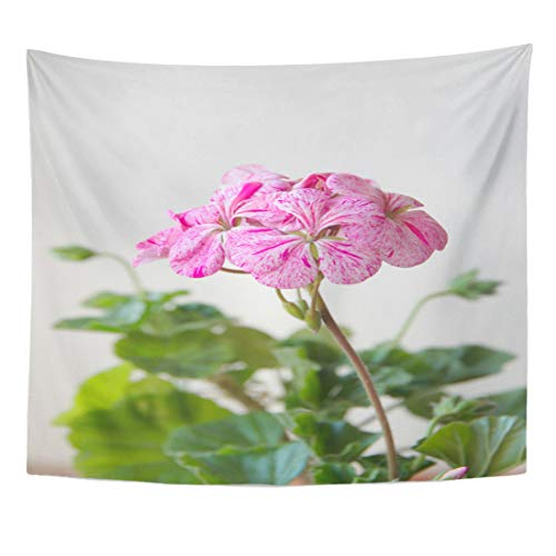 Emvency Tapestry Green Bloom Geranium Plant Horizon Divas Ripple Mixed with Spotty Pink Flowers Blooming Home Decor Wall Hanging for Living Room Bedroom Dorm 60x80 Inches