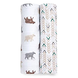 Aden by aden + anais Silky Soft Swaddle Baby Blanket, 100% Bamboo Viscose Muslin Blankets for Girls & Boys, Baby Receiving Swaddles, Ideal Newborn & Infant Swaddling Set, 2 Pack, Flying Arrow