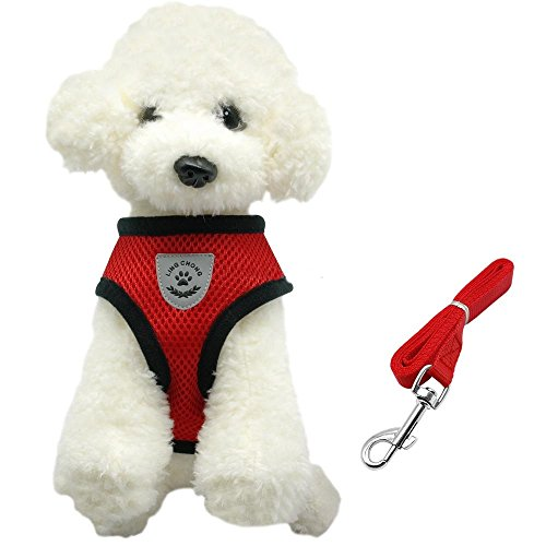 Dog Harnesses and Leash Set Puppy Vest Breathable Mesh Small Dog For Chihuahua (S, Red) (Sympathy Baskets Nj)
