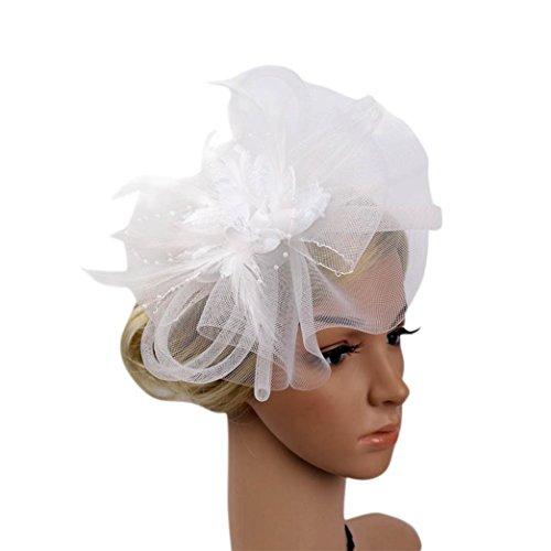 Challyhope Women's Fascinators Hat Hair Clip Feather Wedding
