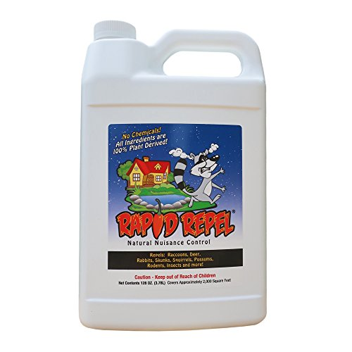 Rapid Repel - Natural Nuisance Animal Repellent - 1 Gallon for Perimeters and Large Areas (Raccoon Repellent)