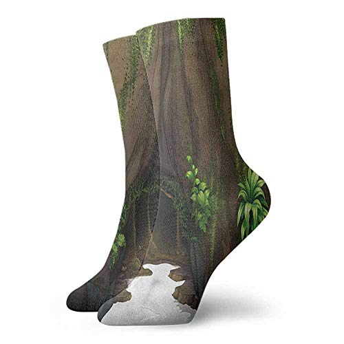 - Socks Comfort Free Shopping Nature,Fantasy Tree Cave Moss 3.4