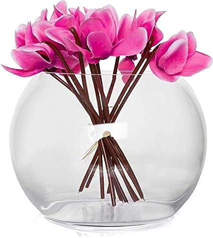 Cristal redondo contemporáneo pecera estilo florero y#x2205;14/12,5 cm
