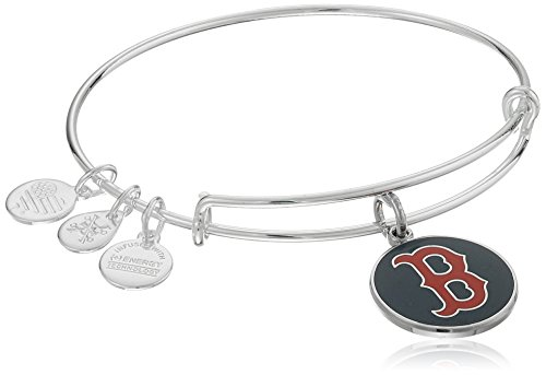Alex Ani Boston Expandable Bracelet