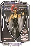 WWE Wrestling PPV Pay Per View Series 20 Action Figure Undertaker