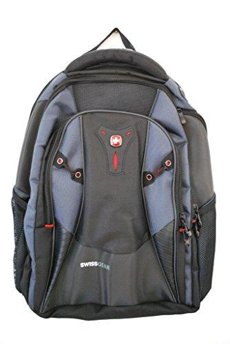 Swiss Gear Mythos Computer Backpack | Frog Backpack