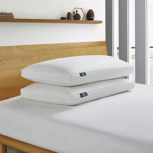 Serta White Goose Feather and White Goose Down Fiber Bed Pillow, Side Sleeper, King