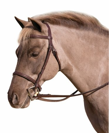 Henri de Rivel HDR Club Fancy Raised Snaffle Bridle Oversized HAV