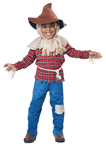 Deluxe Scarecrow Mask (California Costumes Harvest Time Scarecrow/Toddler Costume, One Color, 42067)