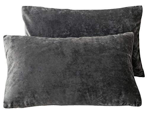 PHF Velvet Throw Pillow Covers Rectangle Lumbar 2-Pack 12
