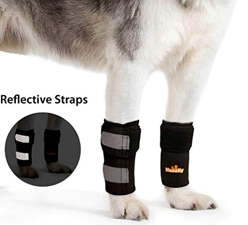 PAIR of NeoAlly Dog Braces Front Leg Carpal Support Canine Hock Braces with Safety Reflective Straps for Limping, Joint Pain, Lameness, and Loss of Stability from Arthritis - 3 Colors (Black S/M Pair)