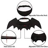 Pet Cat Bat Wings for Halloween Party