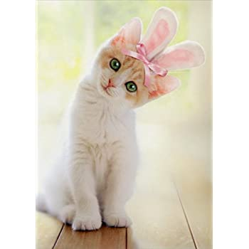 Easter Cat Kitten Bunny Rabbit Ears Pink  From the Cat Easter Greeting Card