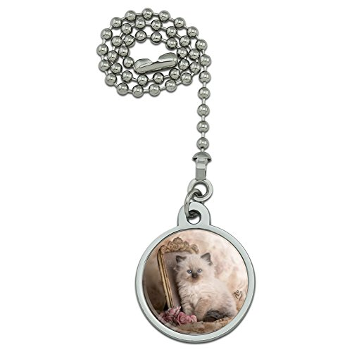 GRAPHICS & MORE Ragdoll Tiffany Cat Kitten Victorian Roses Ceiling Fan and Light Pull Chain ()
