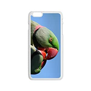 The Cute Acutilingual Parrot Hight Quality Plastic Case for Iphone 6 by supermalls