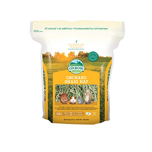 Oxbow Animal Health Orchard Grass Hay For