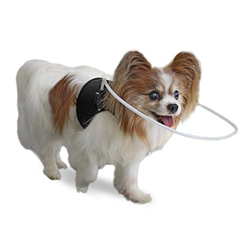 Blind Dog Halo Harness/Vest for Pets Under 30 lbs by Walkin'